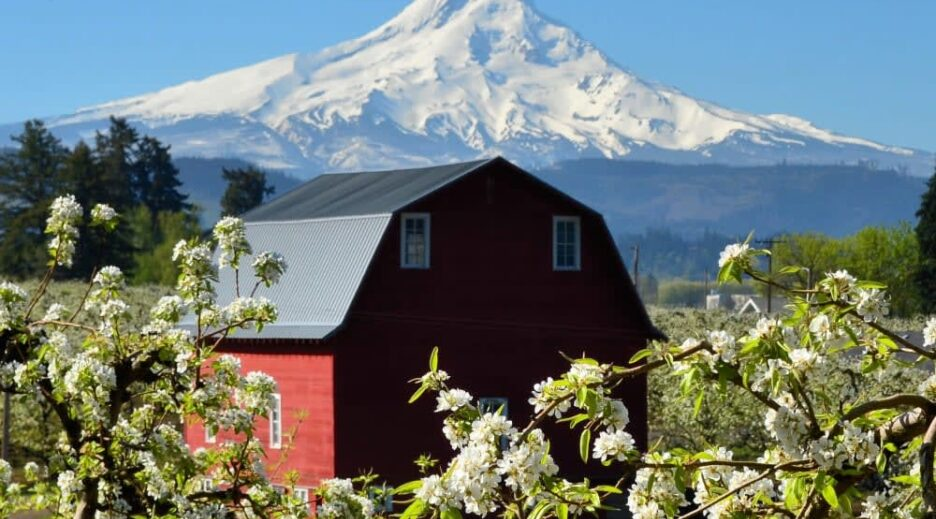 5 Reasons To Love Hood River Valley, Old Parkdale Inn