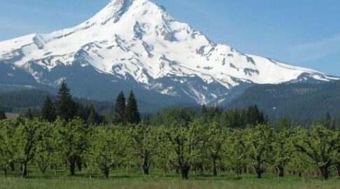 The Mt Hood Loop of the Oregon Cascade Birding Trail, Old Parkdale Inn