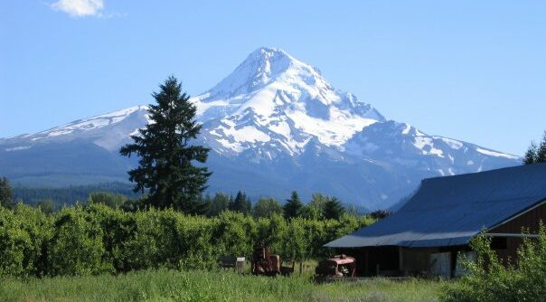 Outdoor Dining and Breweries with a Spectacular Mt Hood View, Old Parkdale Inn