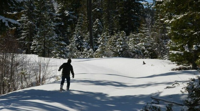 Snowshoe, Cross Country, and Downhill ~ All Near the Old Parkdale Inn, Old Parkdale Inn